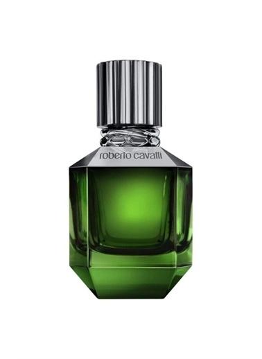 Roberto Cavalli Roberto Cavalli Paradise Found Men EDT 75 ml Erkek Parfüm Renkli